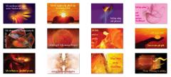 Affirmations-Karten Set Rot